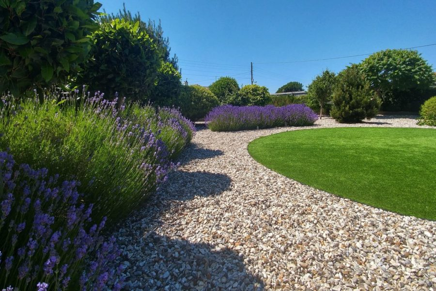 Lavender, easy grass & bay trees